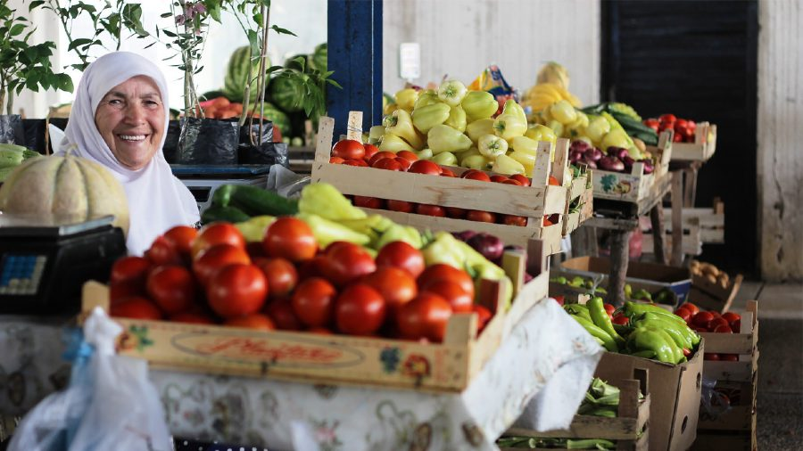 RICHNESS OF THE MONTENEGRIN FOOD MARKETS